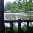 井の頭公園の一角の風景