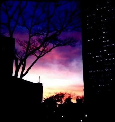 都会の熱夜